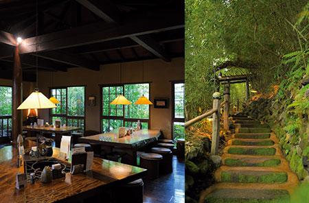 左)手打ち蕎麦やうどん、一品料理を楽しめる母屋のテーブル席。席からは蕎麦打ち場が見える。右)離れへと続く道に広がるのは、緑豊かな日本の原風景。四季折々の景色に心が安らぐ。